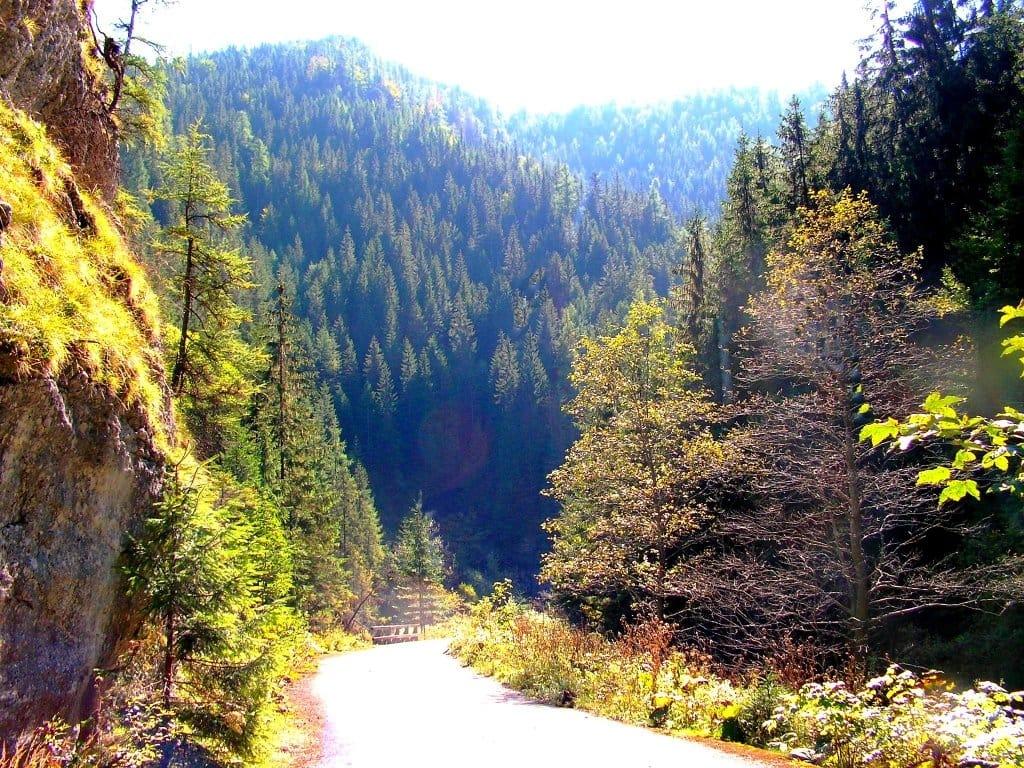 Stratenský canyon