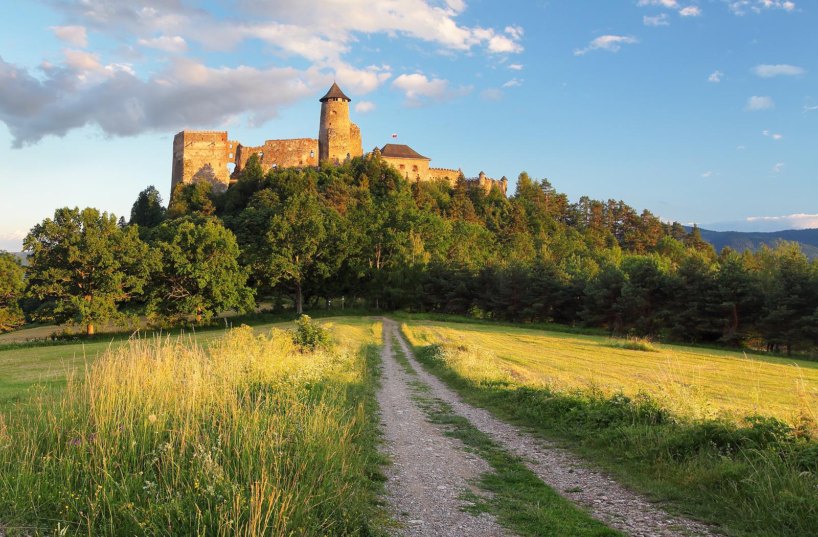 Ľubovniansky (Stará Ľubovňa) Castle