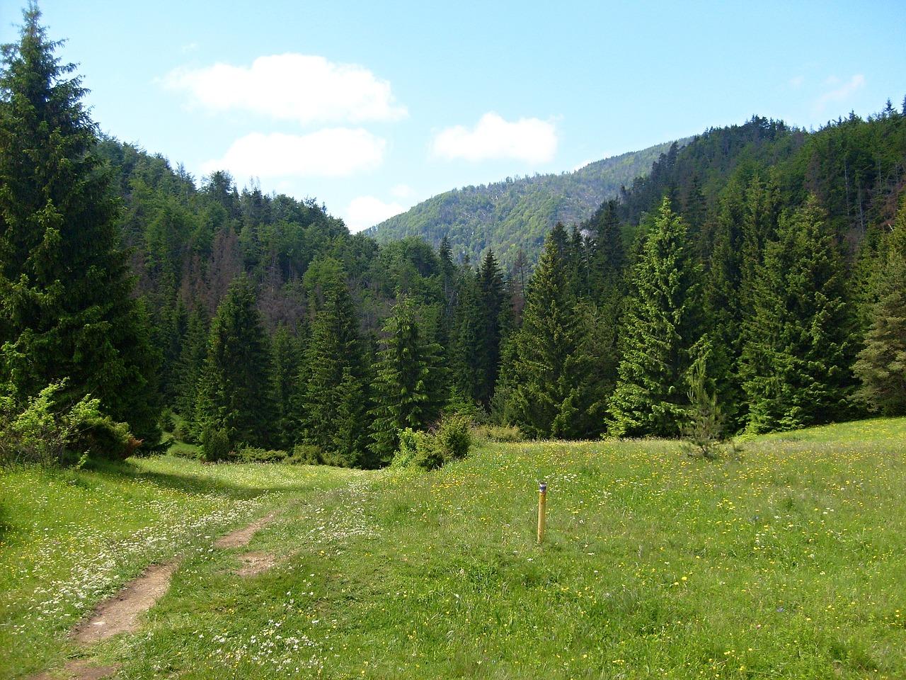 Prosiecka and Kvačianska valley